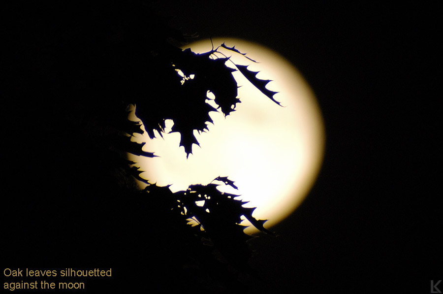 http://www.photon-echoes.com/images/lunar/061403-1w.jpg